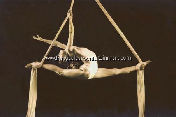 Aerial Acrobats & Aerialists
